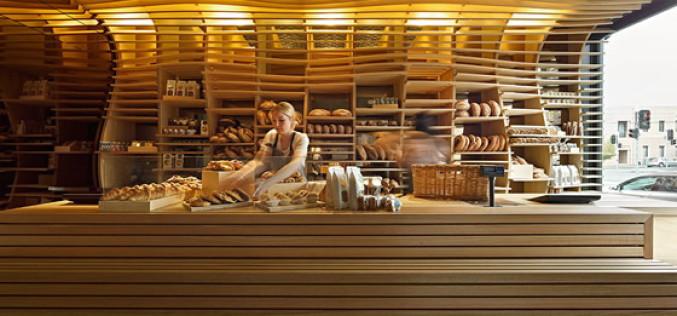 Оборудование для мини пекарни и вопросы организации бизнеса